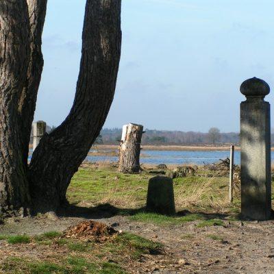Wandelroute Hoenderboom-route, te Heeze