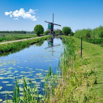 Wandelroute Koeien en kazen, te Stolwijk