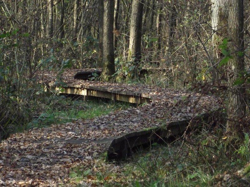 Knuppelbrugje in de Krang
