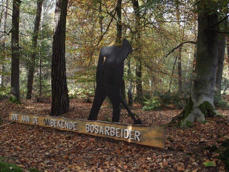 Bij het bosmuseum De Rips