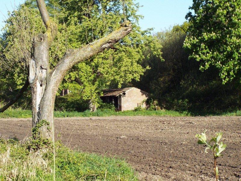 Vervallen boerderij 5 jaar later
