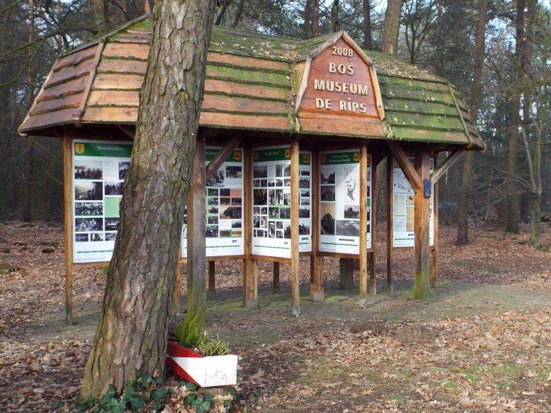 Het bosmuseum De Rips