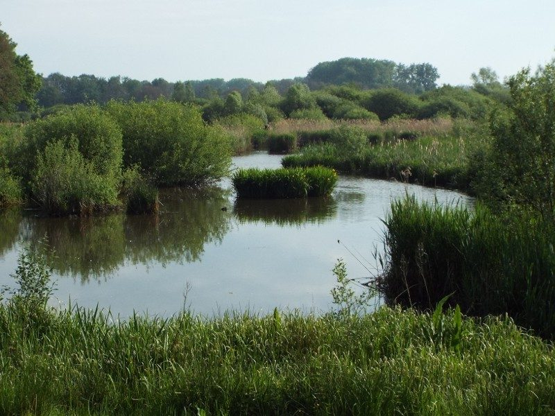 Dal van de Beerze, waterberging
