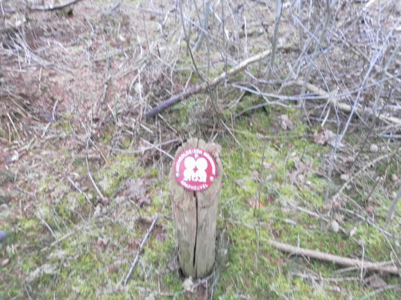Grafheuvels op de Herikerberg
