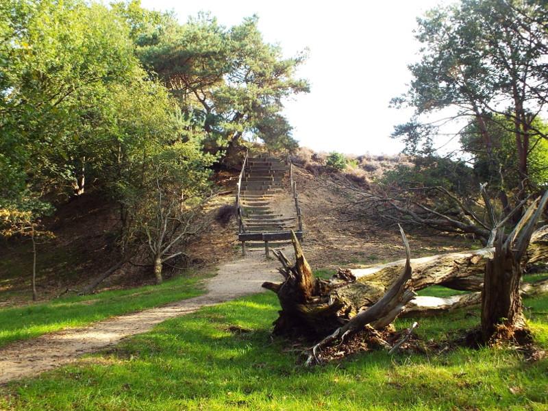 Trap naar heidegebied met de Heumense Schans