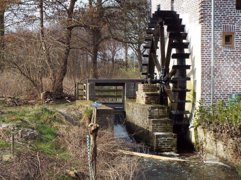 Watermolen de Schouwsmolen inmiddels met waterrad