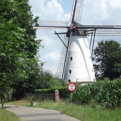 Langs Halder, te Sint-Michielsgestel