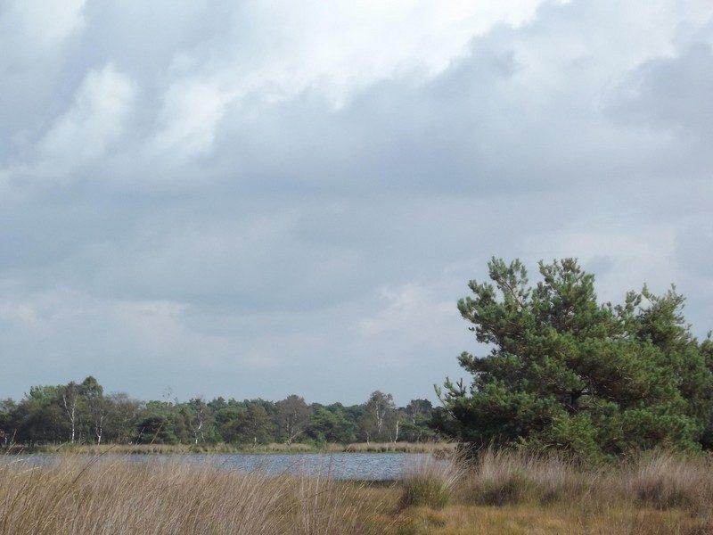 De Landschotse Heide