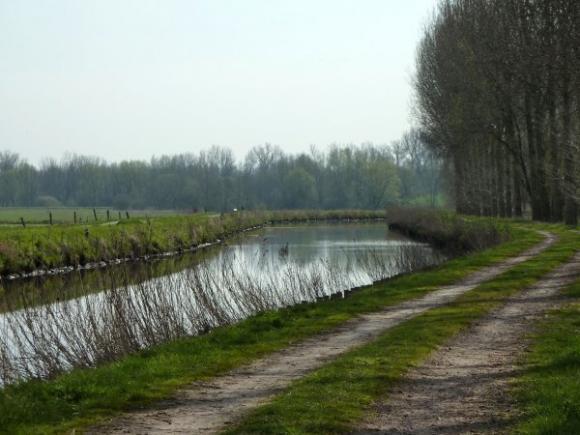 De Moervaart nabij Moerbeke-waas