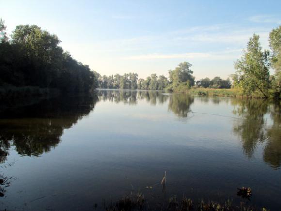 De Hollandsgatkreek in het krekengebied