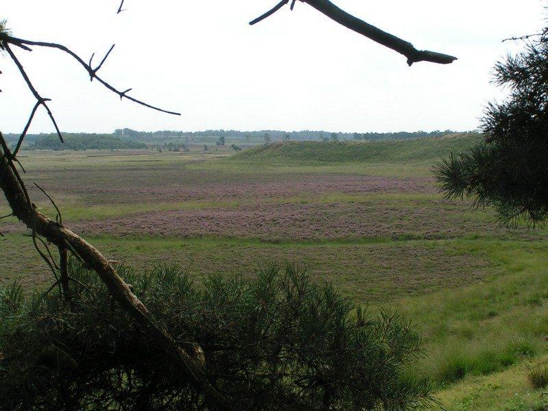 Uitzicht vanuit de Dikkenberg