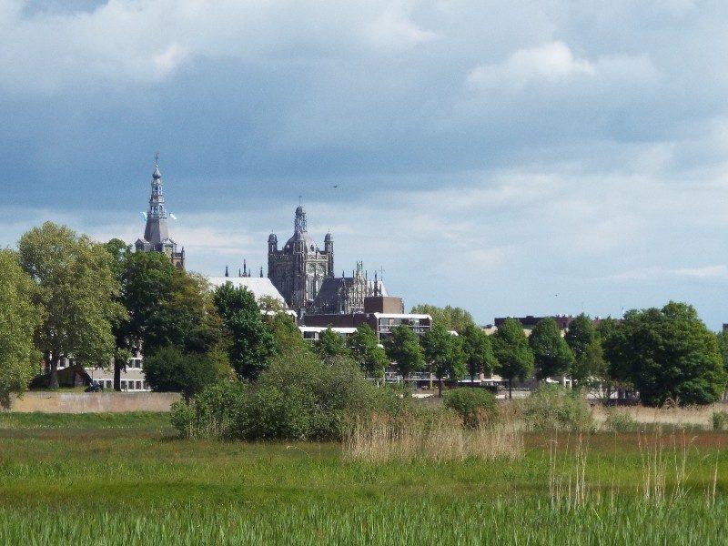 De Sint-Janskathedraal gezien vanuit het Bossche Broek