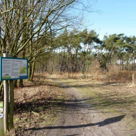 Wandelroute Heidebospad, te Moerbeke-Waas