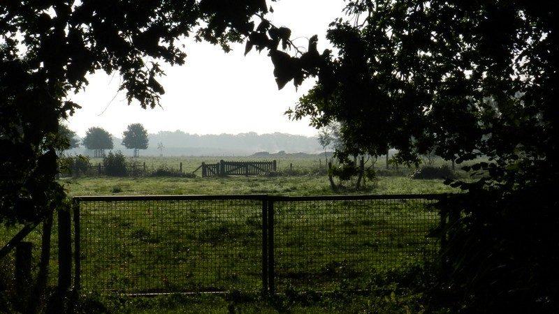 Weilanden nabij Esch.