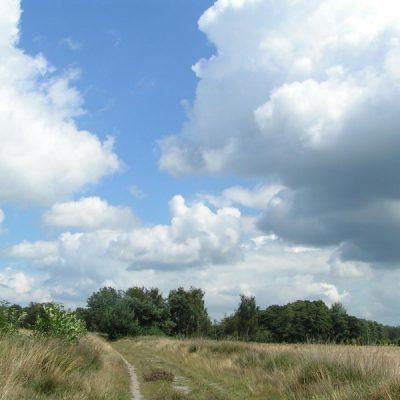 Wandelroute Laathoeve-tocht, te Gastel
