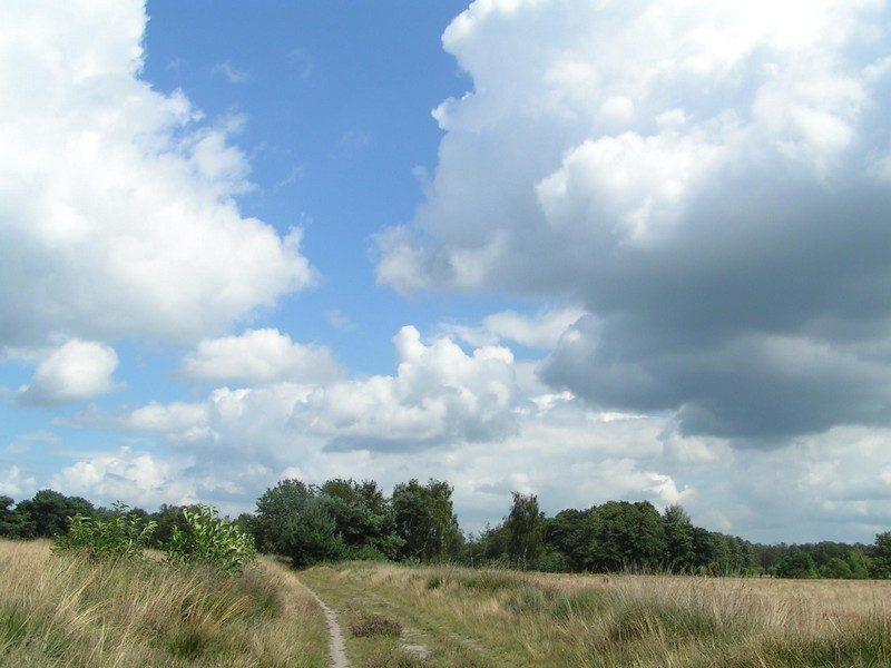Gastelse Heide