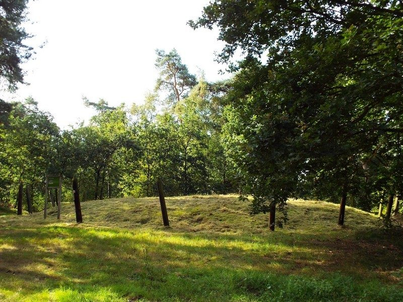 Haarterheide grafheuvel