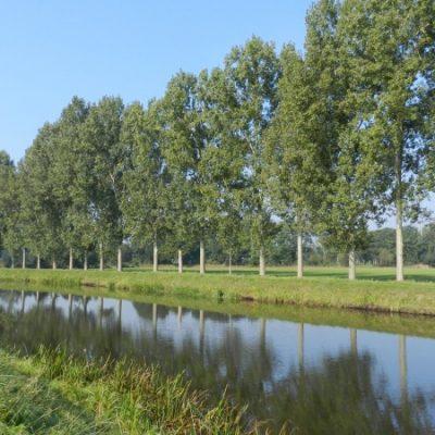 Wandelroute Venrode-route, te Esch