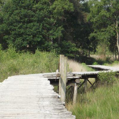 Wandelroute Lumme Buske-route, te Ospeldijk