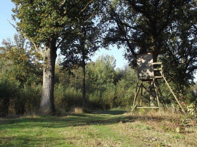 Hoogzit bij de Neerpeelbeek