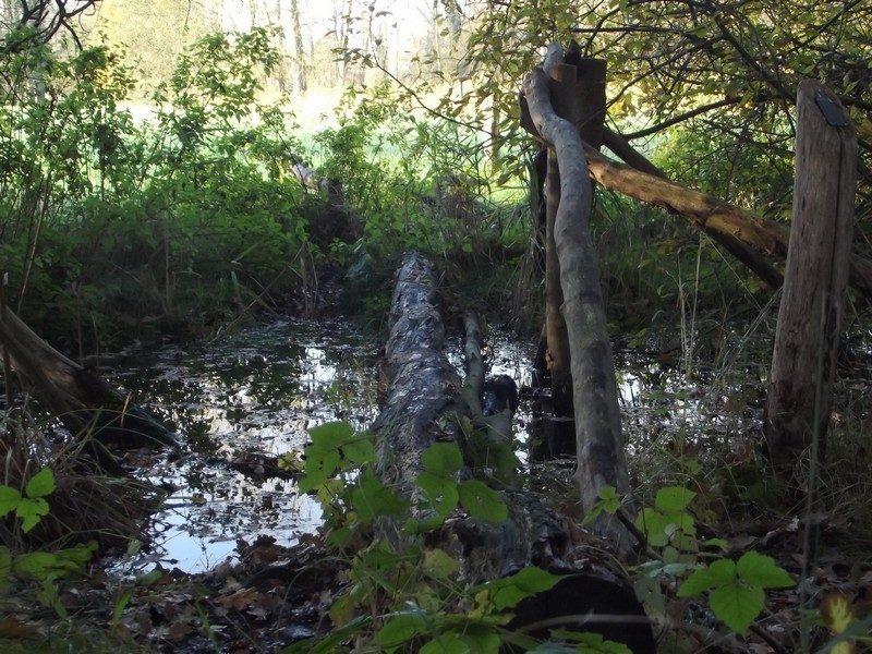 De Geelders, spannend brugje van opgeheven laarzenpad