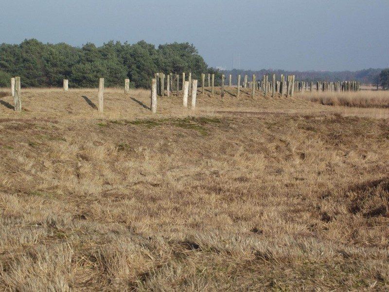 Grafheuvels uit de Midden-Bronstijd