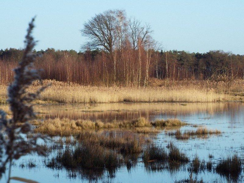 Kettingdijk