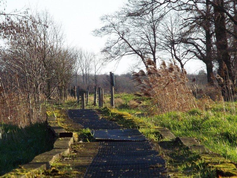 Knuppelbrugje in het Smeetshof