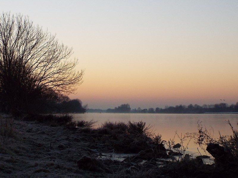Maasuiterwaarden voor zonsopkomst