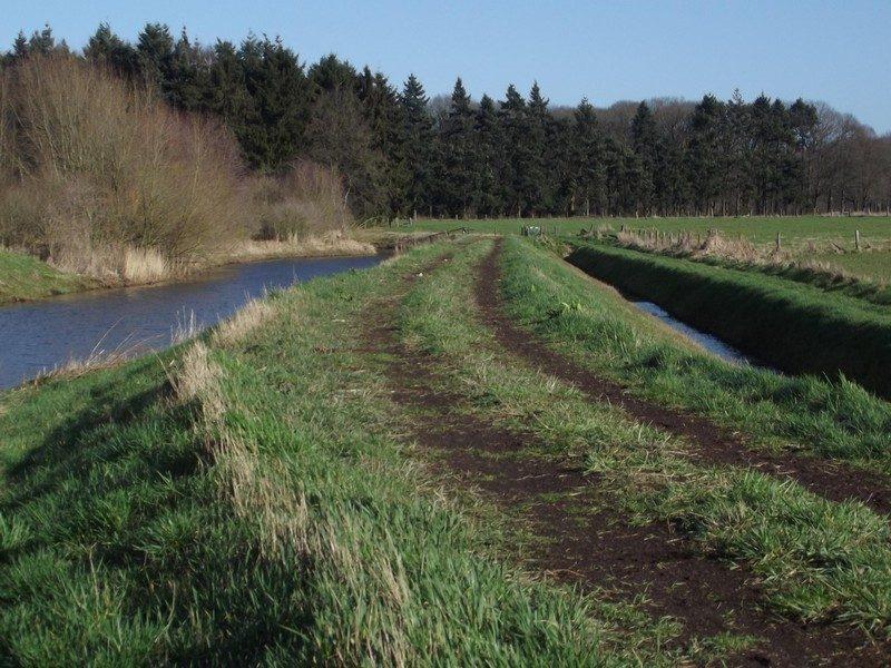 Het riviertje de Reusel