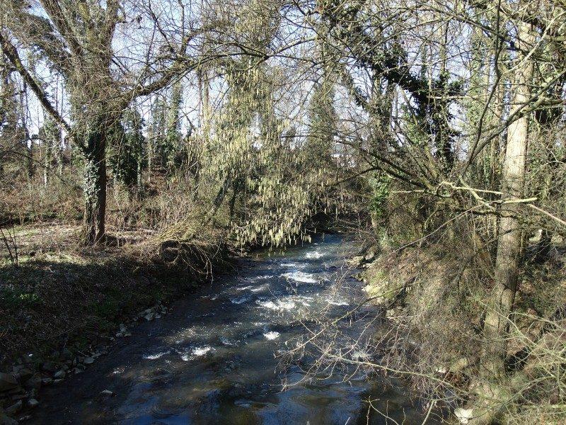 De rivier de Worm