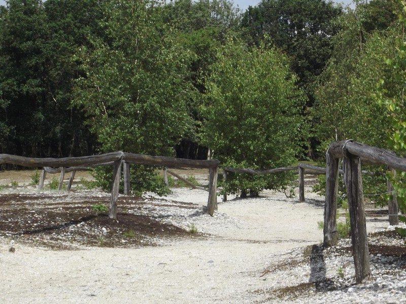 Molenheidse Bossen