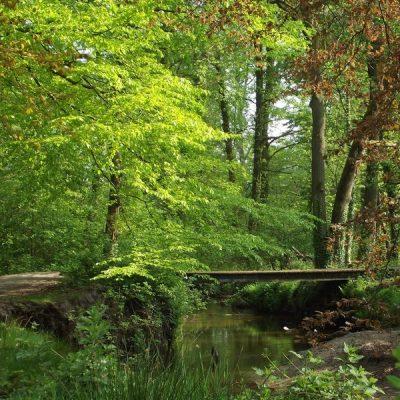 Wandelroute Herbertus-tocht, te Heeze