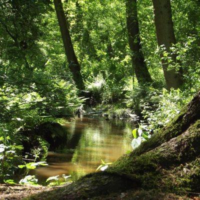 Wandelroute Horstakker-tocht, te Hilvarenbeek