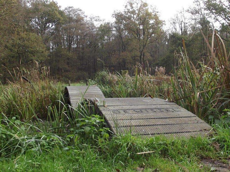 Natuurgebied Schuitwater, de Wissel
