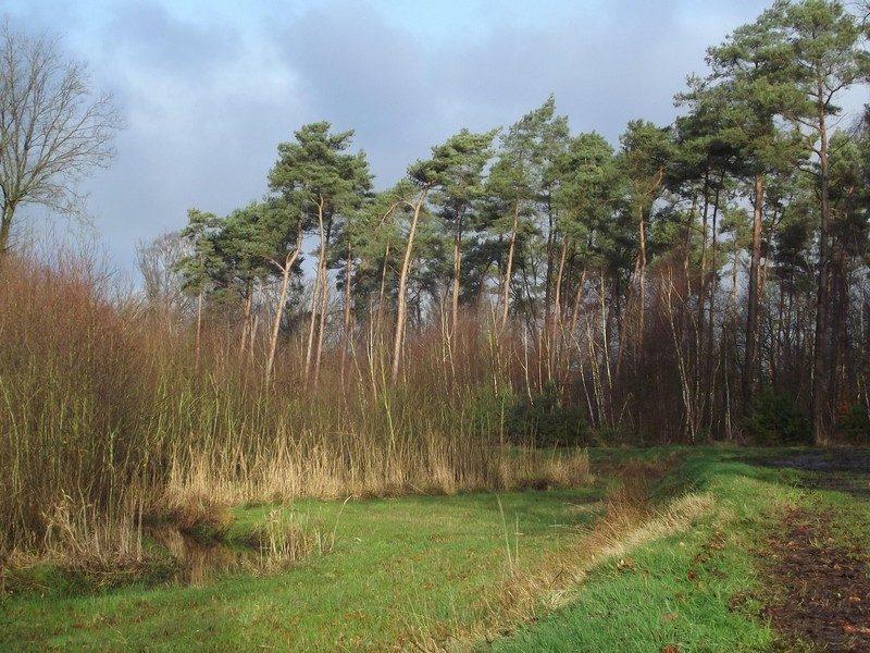 Neerpeelbeek