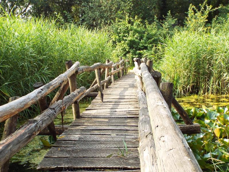 Knuppelbrugje bij Natuurcentrum De Specht