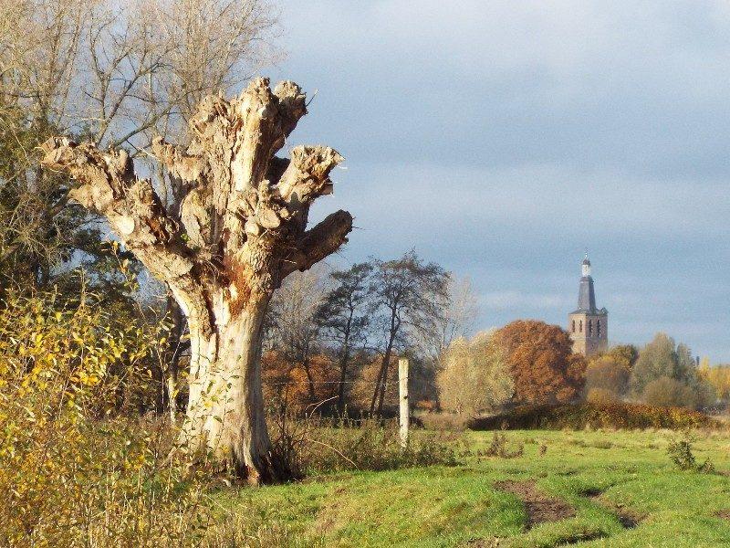 Dommelbeemden met in de verte de knoptoren van Sint Oedenrode