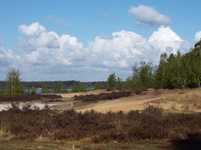 Aan de oever van het Reindersmeer