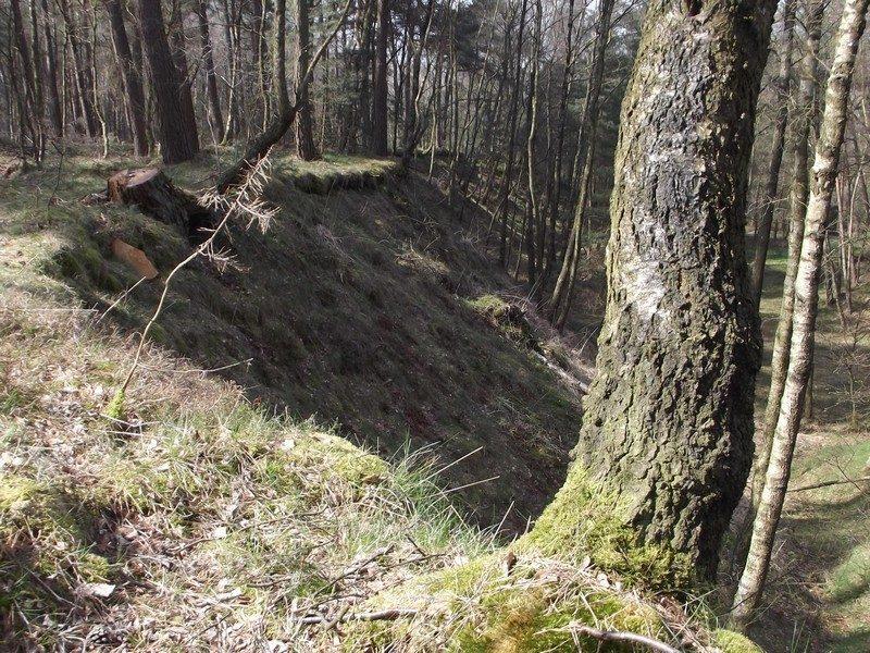 Natuurgebied Schlucht