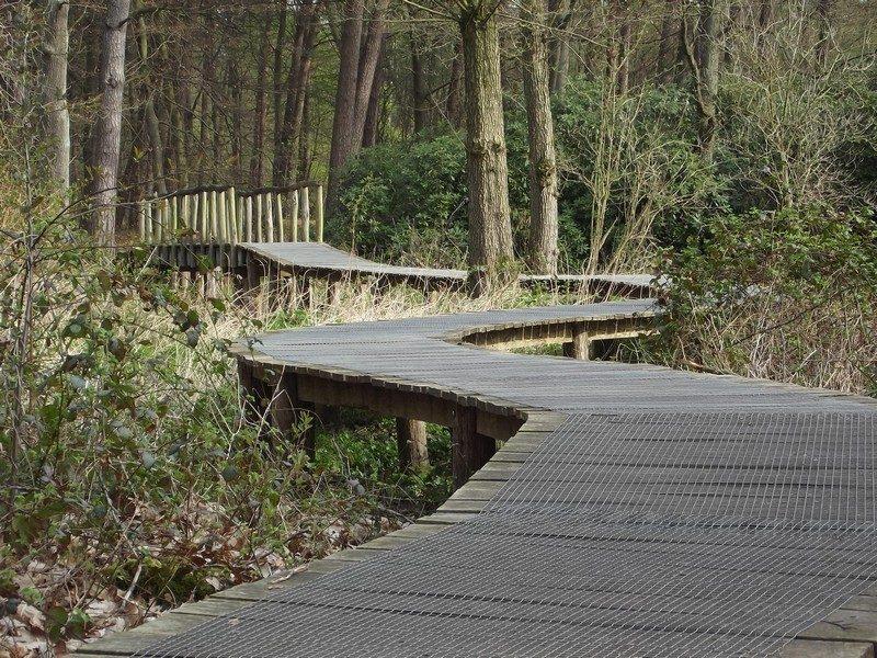 Knuppelbrugje over het riviertje de Swalm