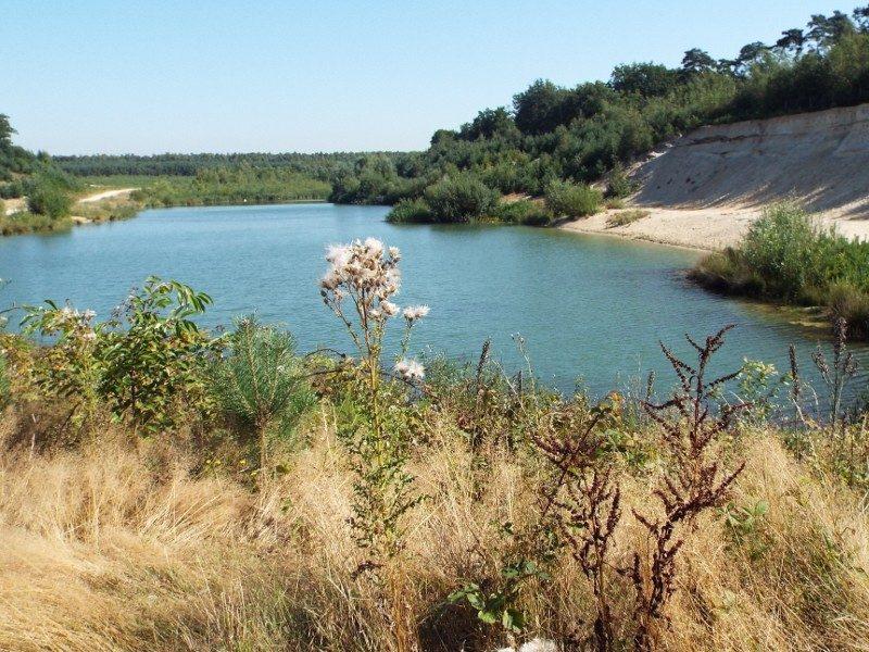 Natuurgebied de Holtmühle, voormalige groeve