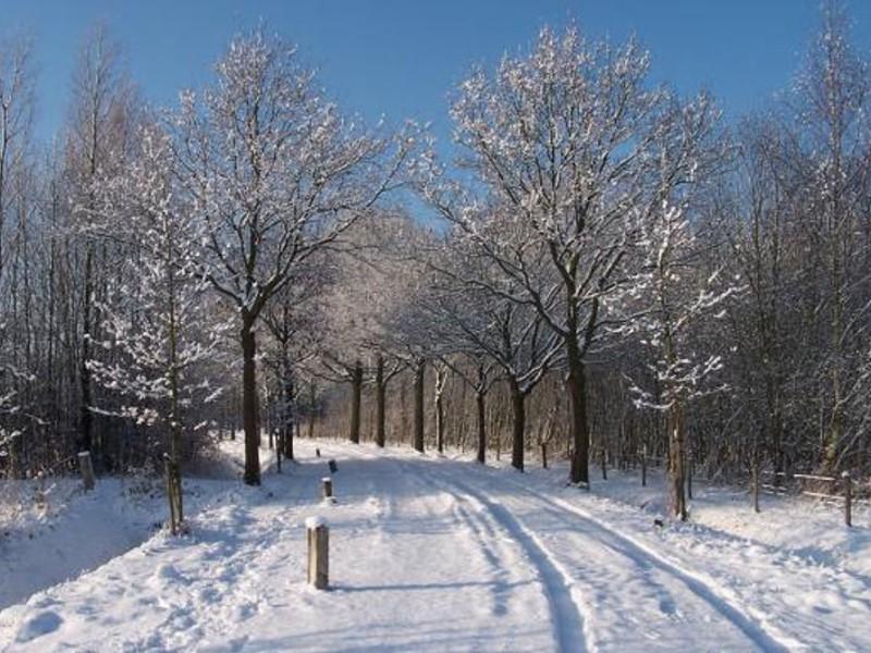 Ook in de winter een mooie route