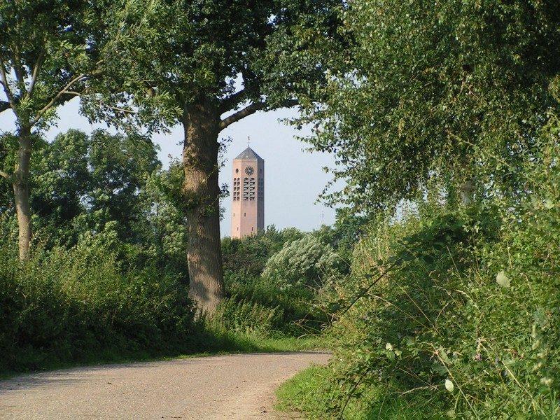 Maasheggen met in de verte de kerktoren van Vierlingsbeek