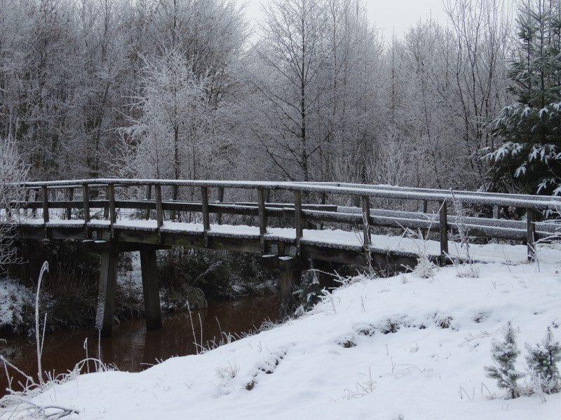 Een brug over de Bosbeek