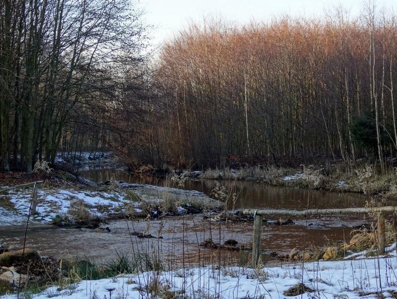 De Bosbeek, een doorwaadbare plaats
