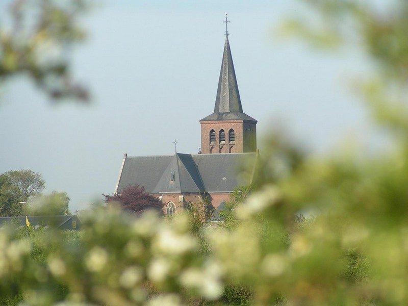 De maasheggen met in de verte de kerk in Beugen