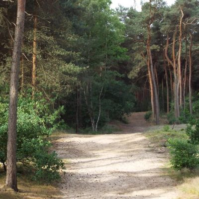 Wandelroute Koeberg-tocht, te Helden