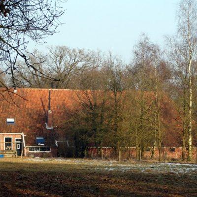 Westerwolde Lus 9, Sellingen Zuid, Sellingen te Groningen