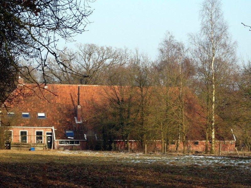 Een Westerwoldse boerderij in het bos